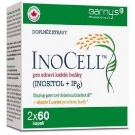 InoCell dvojbalení tbl.2x60