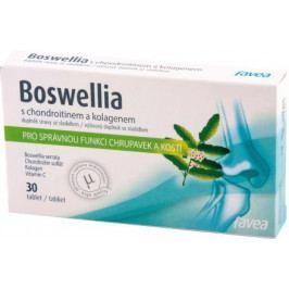 Boswellia s kolagenem tbl.30