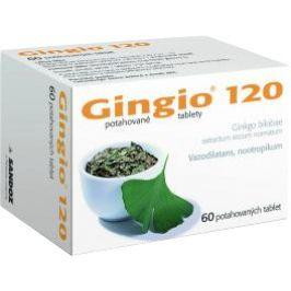 Gingio 120 Potahovaná tableta 60x120mg