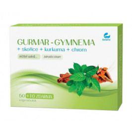 GURMAR-GYMNEMA+skořice+kurkuma 60 vega tob.SETARIA