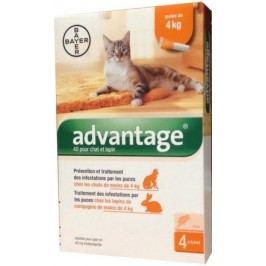ADVANTAGE pro kočky spot.on. a.u.v.4x0.4ml