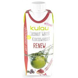 BIO kokosová voda RENEW 330ml