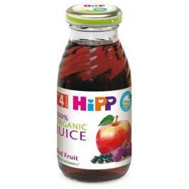 HIPP ŠŤÁVA BIO z červených plodů 200ml