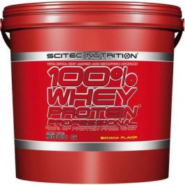 SciTec Nutrition 100% Whey Protein Professional čokoláda/kokos 5000 g