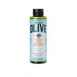Korres Shampoo Olive Shine Šampon pro normální vlasy 250ml